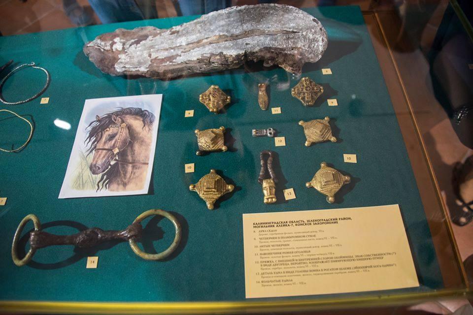 Музей янтаря пополнился новыми артефактами