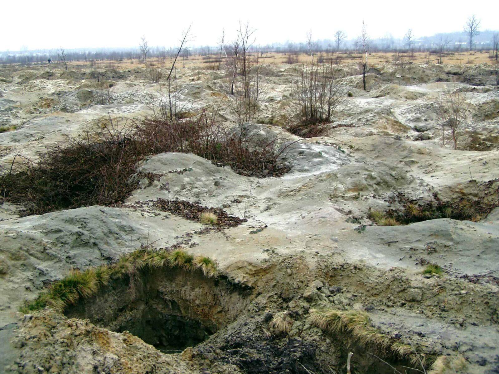Экологи назвали потери Украины от незаконной добычи янтаря